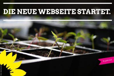 Es geht los - Die neue Website der Grünen Titz